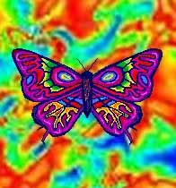 psychodelicbutterfly